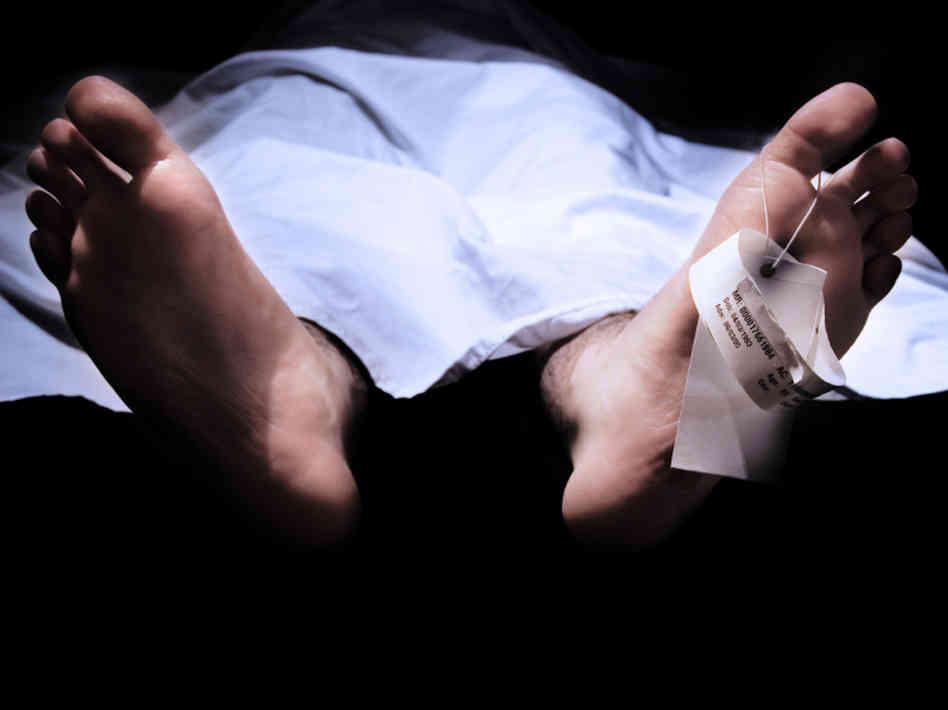 autopsy1-9a136b43ed20d58e0682d1ae01663704bda4b12f-s6-c30